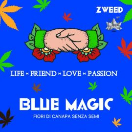 ZWEED - Blue magic 1Gr.