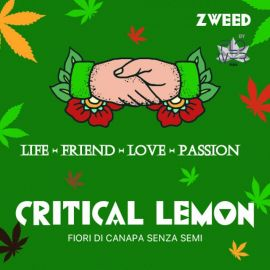 ZWEED By Hempmotive - Critical Lemon 1gr.