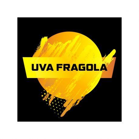 Blendfeel - Single Taste Uva Fragola 10ML