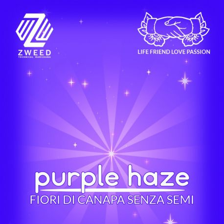 ZWEED - Purple Haze 1Gr.